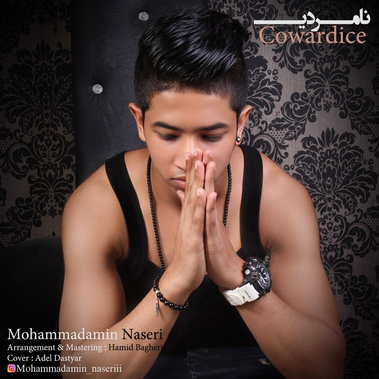 Mohammadamin Naseri – Namardi