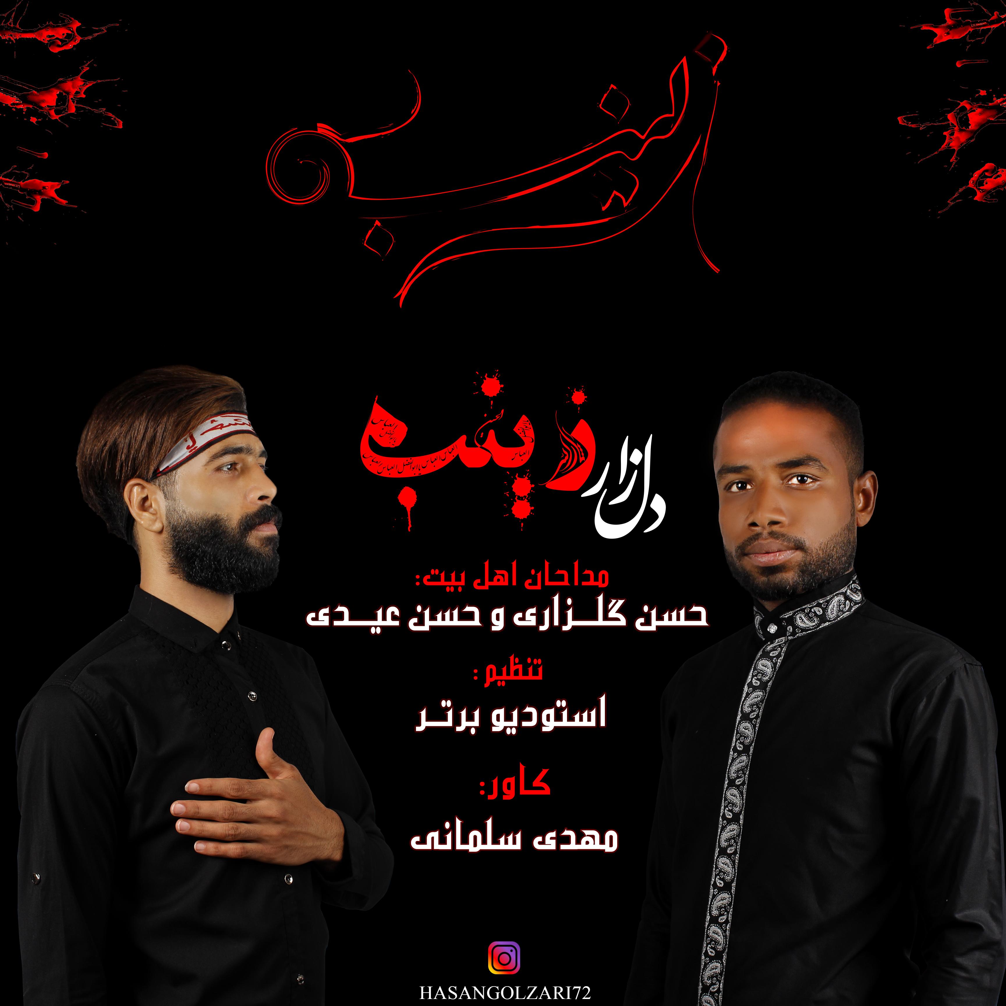 Hasan Golzari & Hasan Eydi – Dele Zare Zinab